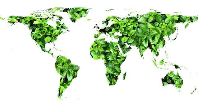 Compromiso de la hostelería con el medio ambiente