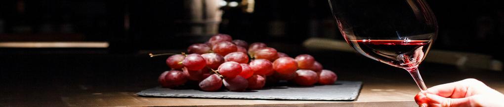 El Vino, su Conservación y Cata